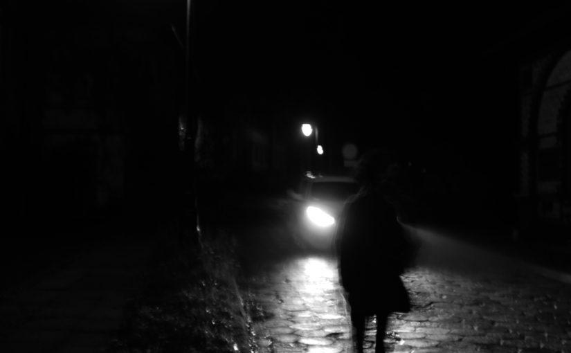 o północy w Paryżu żerują tylko nocne zwierzęta